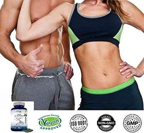 N2 Natural Nutrition Fat Burner NaturXtreme